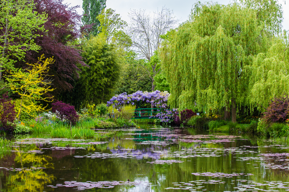 Monet's gardens in Giverny, France, are once again open to the public