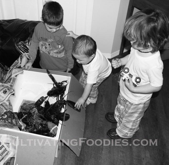 boys with lobsters wm.jpg