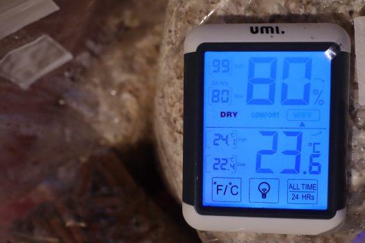 Une température adaptée permet au mycélium de champignon de se devellopper rapidement.