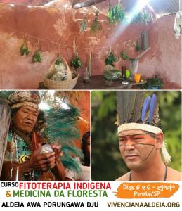 Curso de Fitoterapia Indígena e Medicina da Floresta @ Aldeia Awa Porungawa Dju