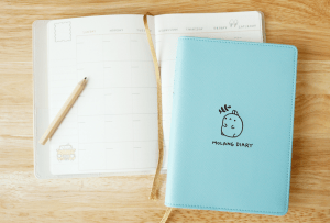 Daily Planner - 2017 Best Planners