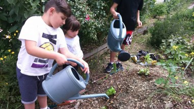 ateliers arrosage culture potager enfants animation