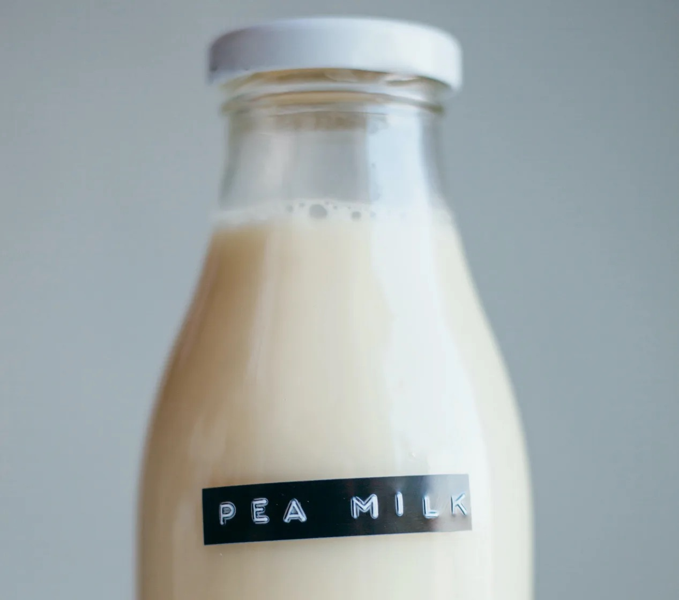 pea milk
