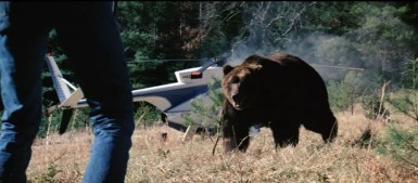 grizzly review 1