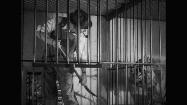 Murders in the Zoo cap 12