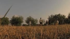 Bodonal De La Sierra en Danza | video-danza