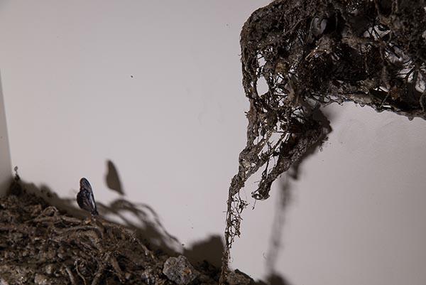 L'Arte vista da Emilio Campanella: Biennale ed Altro...