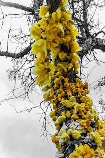 Ofrendas en el árbol de la vida en el inti raymi