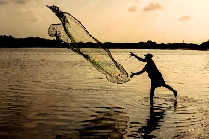 Pesca con atarraya en el manglar del archipiélago de Jambelí, El Oro. Foto: Javier Vázquez