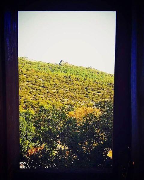 Fotografia postată de Ghica Andreea.