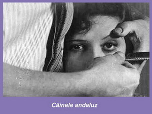 https://costintuchila.files.wordpress.com/2011/07/cainele-andaluz-luis-de-bunuel-ochi.jpg?w=500