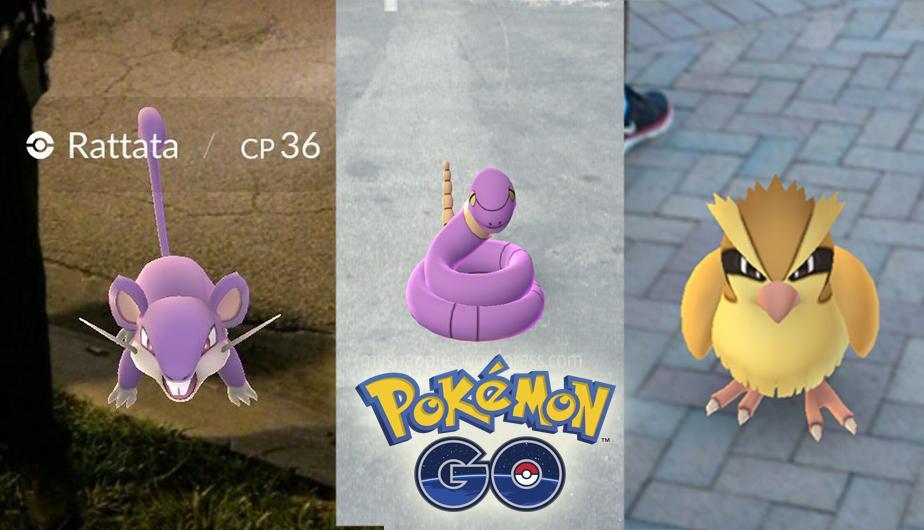 cultura geek pokemon go pidgey rattata 1