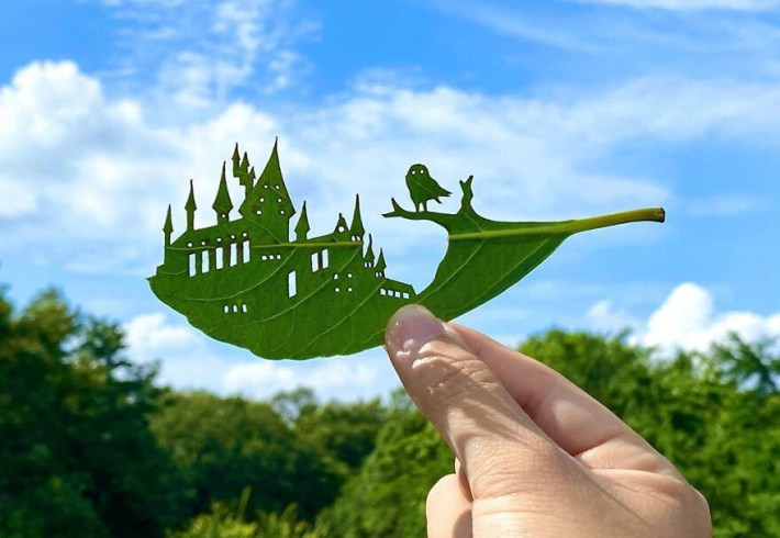 lito leafart hojas miniatura6