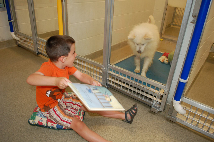 kids read shelter dogs human society of missouri 8