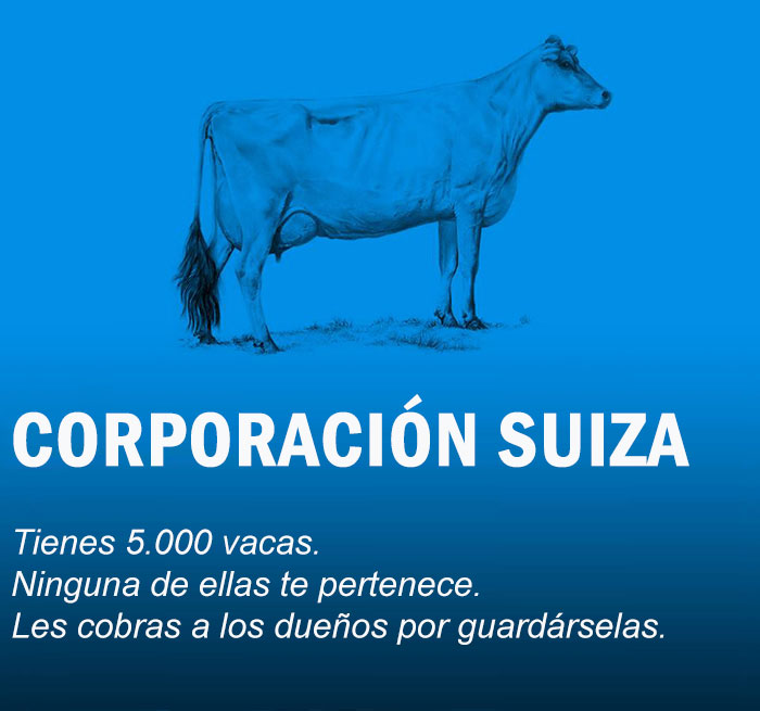 vacas economia Cultura Inquieta8