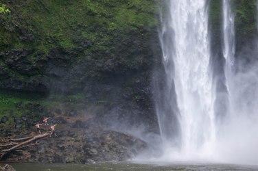 Waimea Falls, Kaua'i