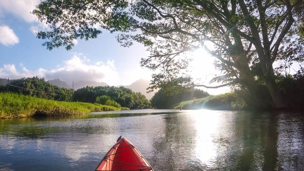 Kayaking Hanalei River, Kauai