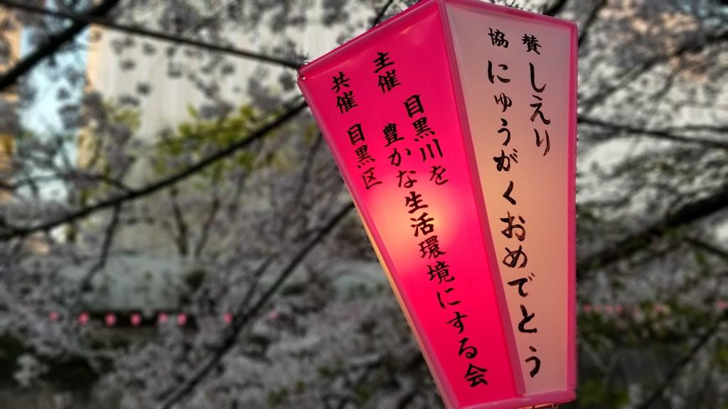 Nakameguro Cherry Blossoms - Tokyo, Japan