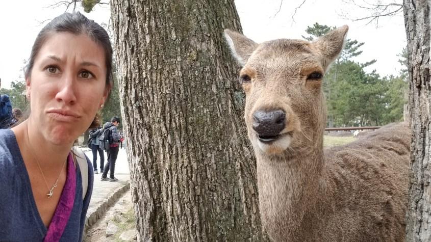 Nara Deer Selfie