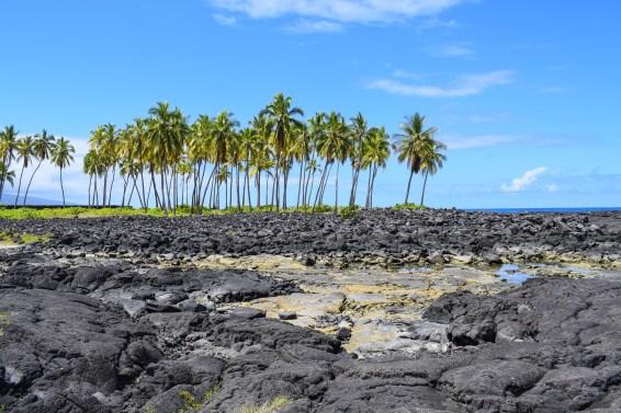 Honaunau - Big Island