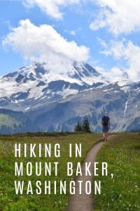 Hiking in Mount Baker, Washington