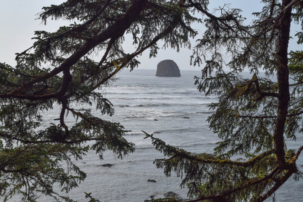 Cape Alava Loop Trail, Olympic National Park, Washington