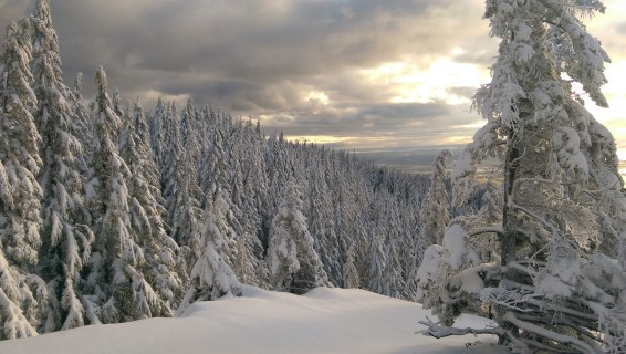 Oyster Dome Winter1
