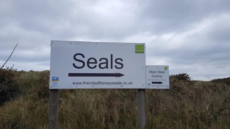 seals-this-way