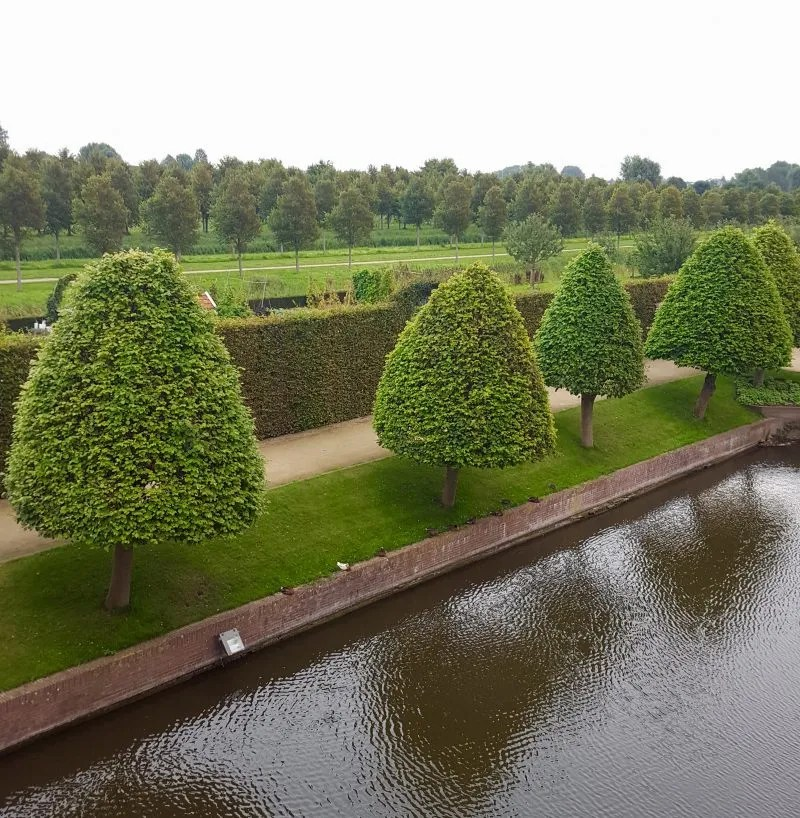 View of moat and trees from Heemskerk Netherlands Castle Hotel