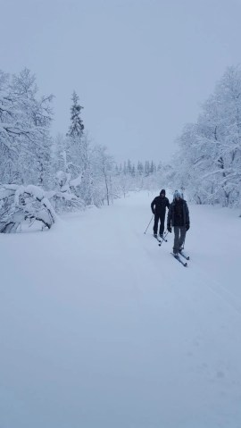 Cross country ski Norway