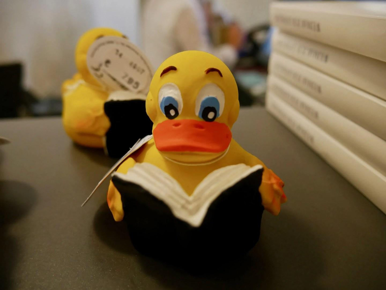 Reading duck