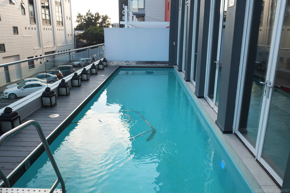 Protea Fire and Ice Pool