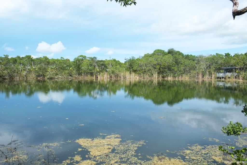 Blue Hole Florida Keys