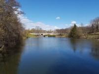 Vår i Frognerparken. Foto: Siri Wolland