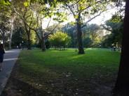 Parken er fortsatt grønn. Foto: Siri Wolland