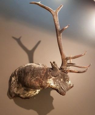 Fra fotograf Christian Houges utstilling; Residence of Impermanence. Foto fra utstillingen, Siri Wolland.