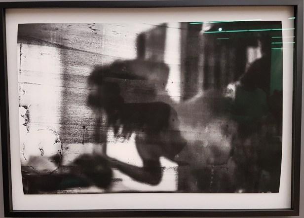 Fotograf Camilla Jensen, Sweet hollow 1, New York, 2014. Foto fra utstillingen; Siri Wolland.
