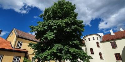 Her er Mangelsgårdens hovedbygning til venstre og asylet til høyre. Foto Siri Wolland.