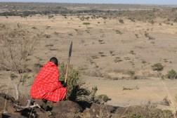 Masaiene spaner. Masai Mara Kenya. Foto: Siri Wolland
