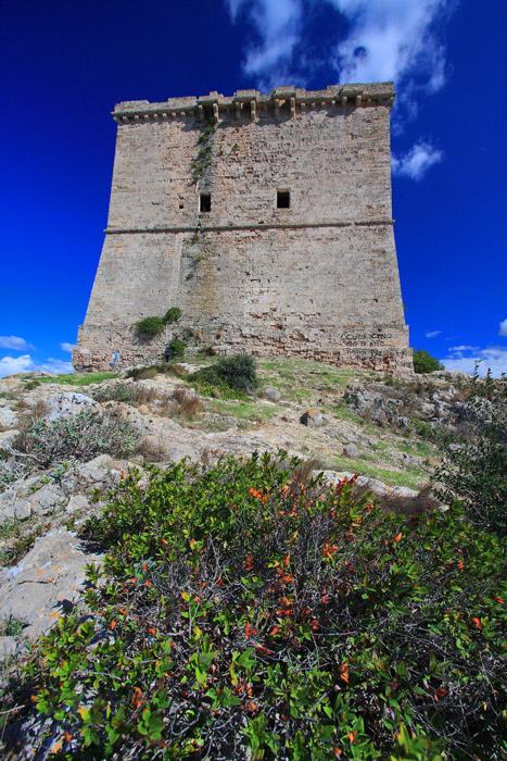 Gianfranco Budano: Torre di Santa Maria dell'Alto (Nardò - Porto Selvaggio)