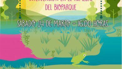 Photo of Jornada de intervención comunitaria en la Reserva Natural Urbana – SUSPENDIDO