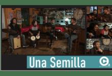 "Photo of ""UNA SEMILLA"" POR CULTURA ABIERTA"