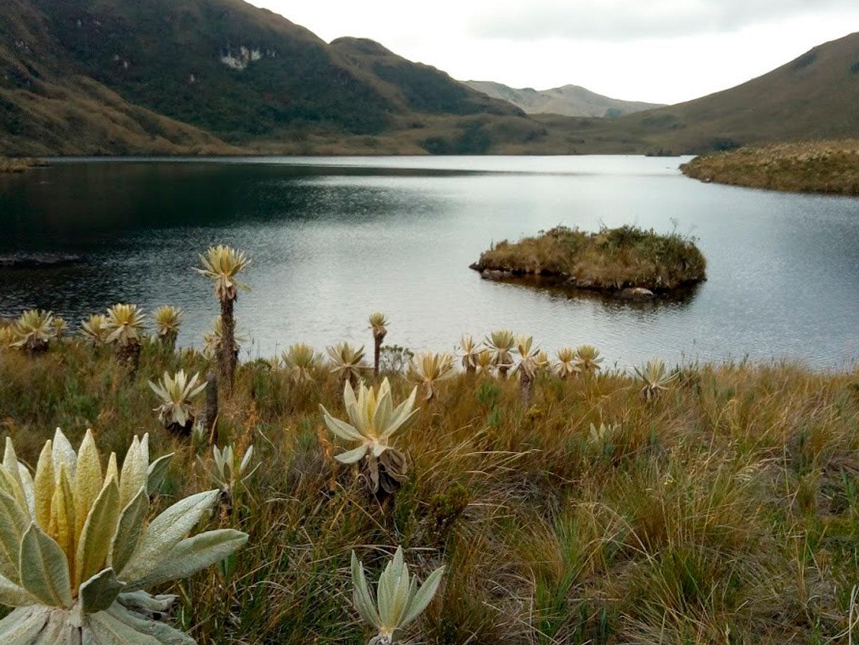 sevilla-valle-del-cauca0651