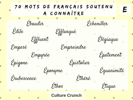 français soutenu