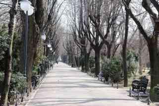 park-4038489_960_720