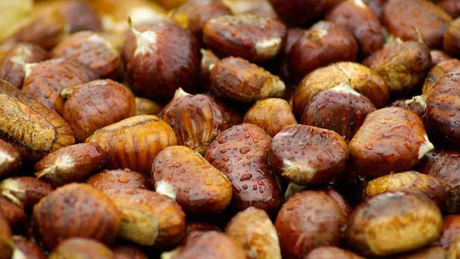 chestnuts-994138_960_720
