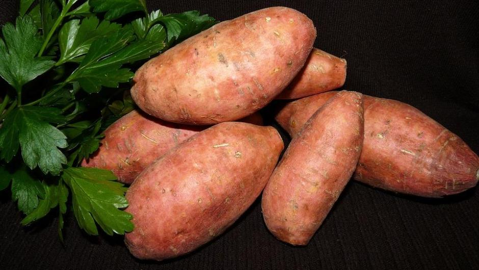vegetable-3559112_960_720
