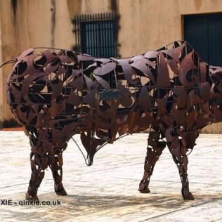 Toro bull, Santo Domingo, Dominican Republic