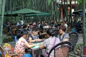 Playing mahjong in Cultural Park, Chengdu, China