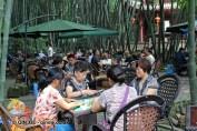 Playing mahjong in Cultural Park, Chengdu, China